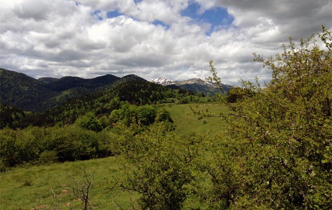 Vandretur i Pyrenæerne